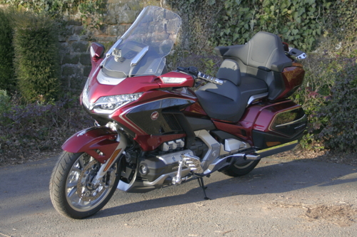 goldwing small